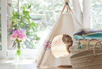 Делаем дом для кошки своими руками: выбор материалов и пошаговая инструкция