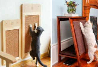 Самые разные идет когтеточек для кошек