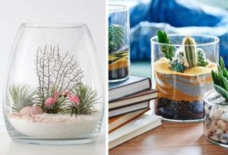 Идеи флорариумов с цветным песком