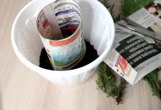 Простой и непривычный способ укоренения растений