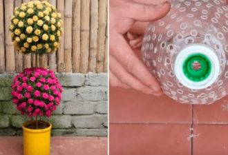 Креативное использование пластиковых бутылок для крутого живого декора